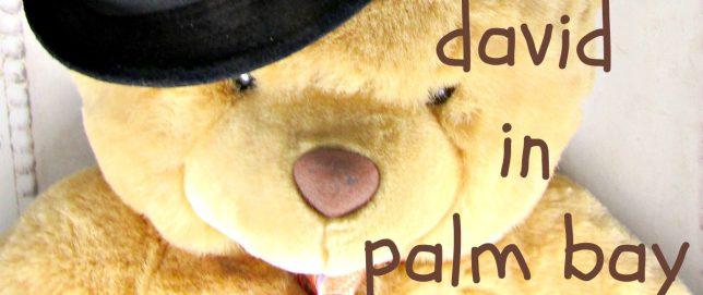 teddy bear wearing a necktie and hat
